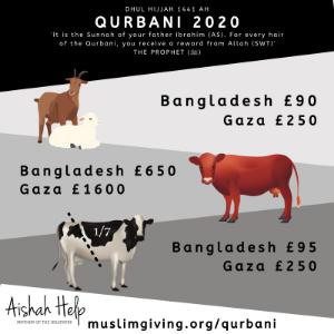 Qurbani for £250