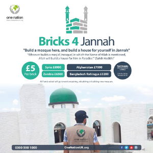 Bricks 4 Jannah